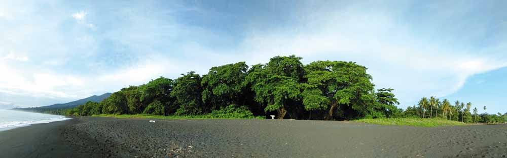 06_Opt1_Tangkoko landscape.jpg