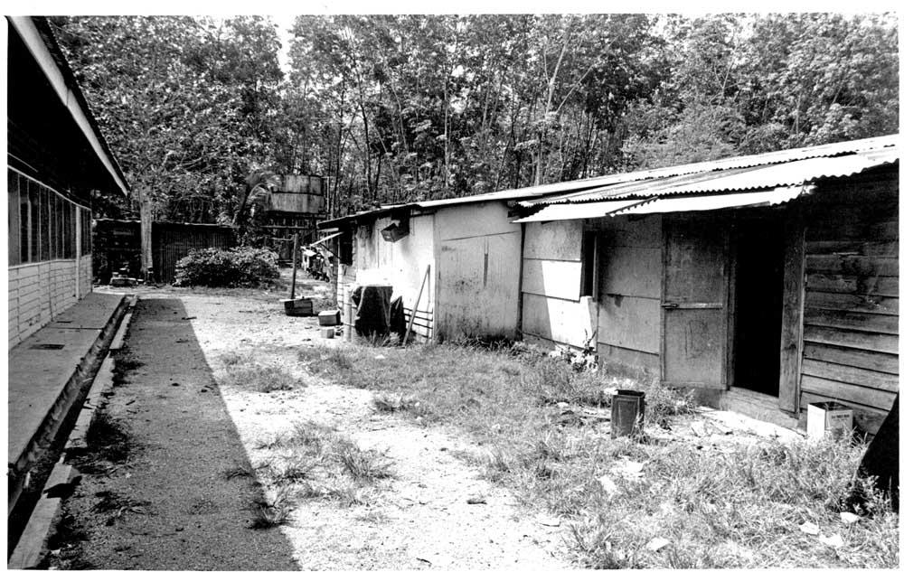 housing[1].jpg